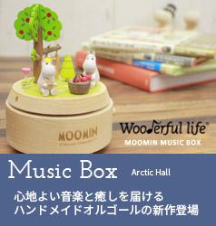 Arctic Hallミュージックボックス
