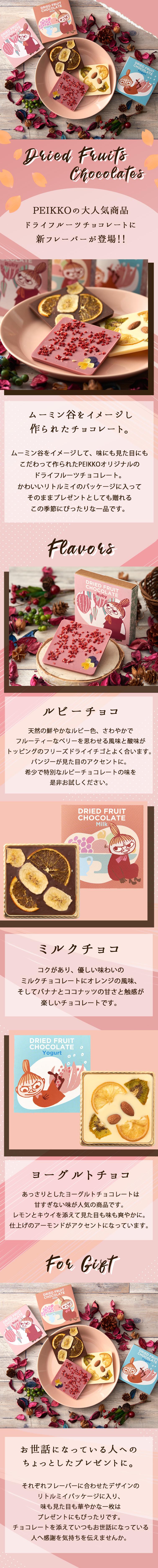 ムーミン バレンタイン チョコレート ドライフルーツチョコレート